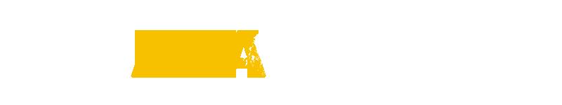 Ara Company